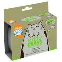 Good Girl Kitty Grass x 12