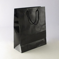 Medium Black Luxury Bag.