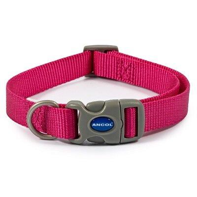 Ancol Raspberry Adjustable Nylon Dog Collar 20 - 30cm
