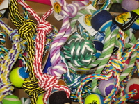 Paws Paradise Rope Toy Assortment - X-Large x 25