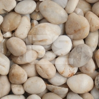 Premium Midi White Polished Pebbles 15-30mm