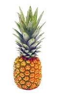 Baby Pineapple: Box