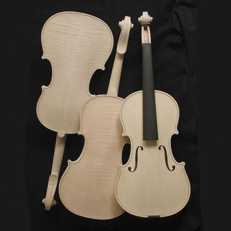 Violin in the white