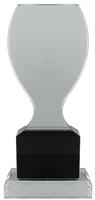 20cm Clear/BK Crystal  Award (Satin Box)