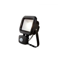 Robus Remy 10W LED PIR Floodlight IP65 4000k