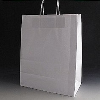 Large white paper bag