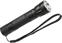 Lux Pre Rechargeable Torch 250lm IP54 Inc Battery