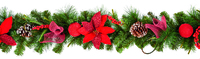 1.8M Red Poinsettia Garland
