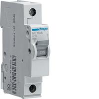 Hager 40AMP S/P MCB C Type
