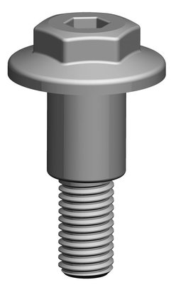 Pewag Spare Part PLBS | Standard Length Screw for PLBW