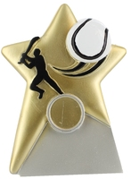 10cm Star Hurling Plaque with 25mm Recess