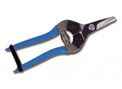 ARS 310 Fruit Pruner - Blue