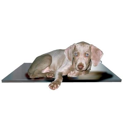 Heat Mat Rigid Dog