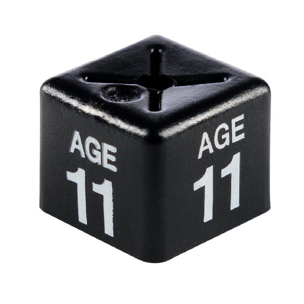 SHOPWORX CUBEX 'Age 11' Size cubes - Black(Pack 50)