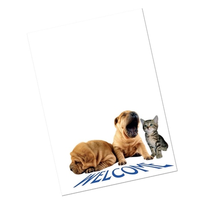 Purfect New Client Cards (10)