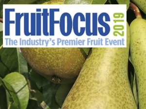 Fruit Focus 2019