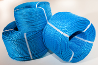 12mm Blue Poly Rope 200M