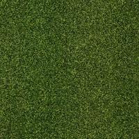 GOLF GRASS 16mm/16 STITCH 4M