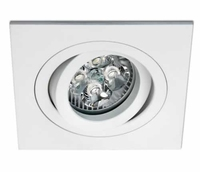 ONE Light White Square Adjustable Downlight