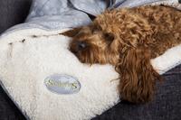 Scruffs Snuggle Pet Blanket 110 x 75cm x 40