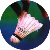 Badminton (25mm Centre)