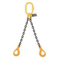 2 Leg Chain Sling c/w Sling Hook (WLL 5.1T-12T)