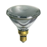 Philips Par 38 80W Halogen Flood Lamp
