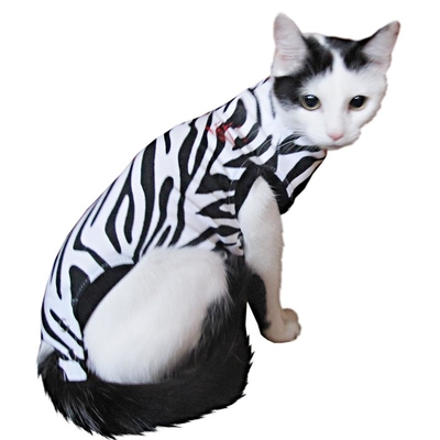 Medical Pet Shirt for Cats Zebra Print XS