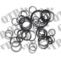 Hyd Pump O Ring Kit