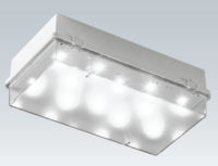 ZETA3 LED Emergency bulkhead IP65 4W Maintained 2.3W Non Maintained