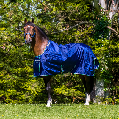 Pony Rugs
