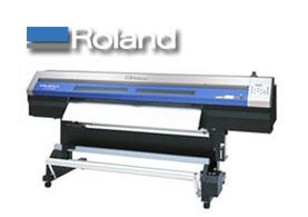 Roland Eco Solvent Compatible