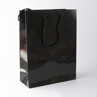 Small Black Luxury Bag