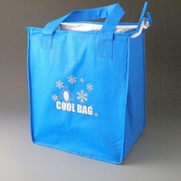 Cooler bag. (Box of 50)