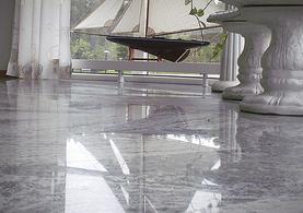 Floor Polish