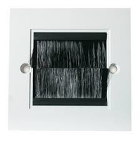 Triax White Single Module Brush Plate(304241)