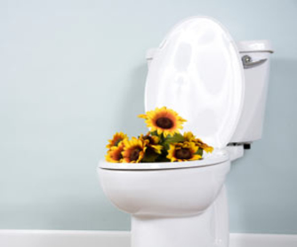 How to remove Odours in the Washroom?