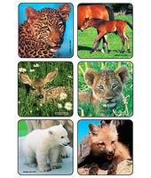 MEDIBADGE - BABY ANIMALS STICKERS