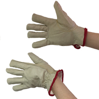 Bodytech Lined Driver Gloves, Pair