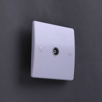 220-250v 50-60Hz 1G TV SOCKET NON ISOLATED