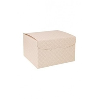 BOX ONE PIECE WITH LID NUDE EMB 245X245X150MM