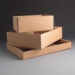 Die Cut Cardboard Trays