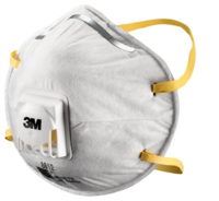 3M 8812 Face Mask P1 (10's)