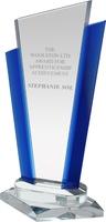 25cm Signature Award (Satin Box)