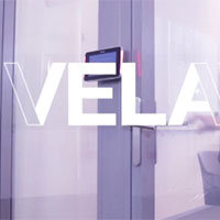 VELA™ Privacy Film from Avery Dennison