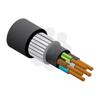 5x10.0mm SWA PVC Cable