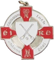 34mm Hurling Medal - Silver / Red