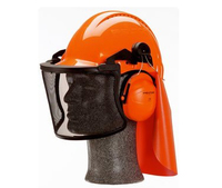 3M PELTOR G2031A Forestry Helmet Unit