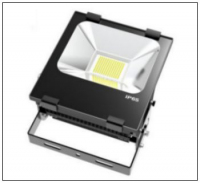 Tegral Com Lite Saturn Flood Light
