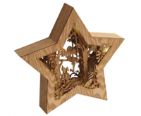 LED STAR FAIRY DIORAMA ASH CHRISTMAS DECORATION  COMES WITH  BATTERIES